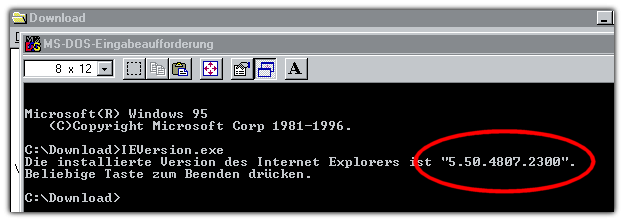 IE Version unter Windows 95